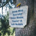 Im Berchtesgadener Land (Foto: © Thomas Hendele)